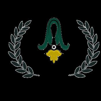 ASF Jury Award