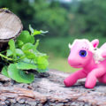 Pegasino. ASF - Animated Short films.net - 2D, 3D or stop motion animation movies
