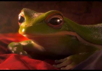 A female frog graciously swims in the water, catching the attention of a curious male toad. ASF - Animated Short Films.net - 2D, 3D and stopmotion animation short films.
