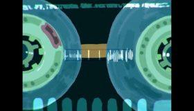 Signal - 2D animated short film