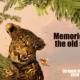 """Memories of the old skin"""